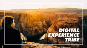 Digital Experience Tribe
